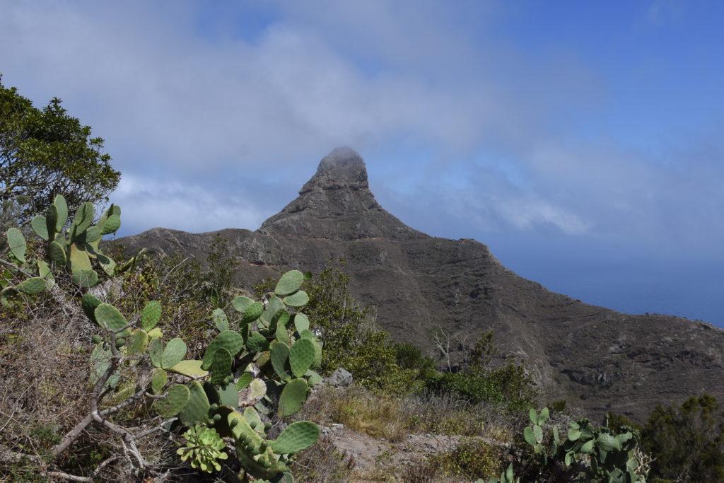 hora Roque de Taborno, vrcholek v oparu, v popředí kaktus